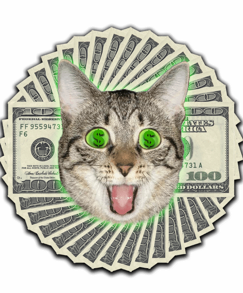 The Jewelry Pawn Shop that helps people see the beauty of money! Sorry, cat...